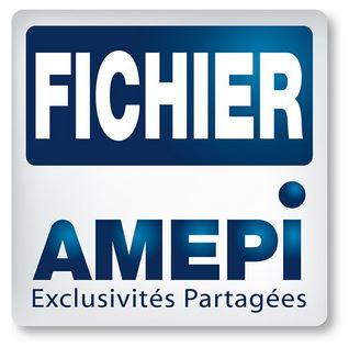 http://www.fichieramepi.fr/carte-agences?id=615&dpt=29&n=UGF5cyBkJ0lyb2lzZQ==